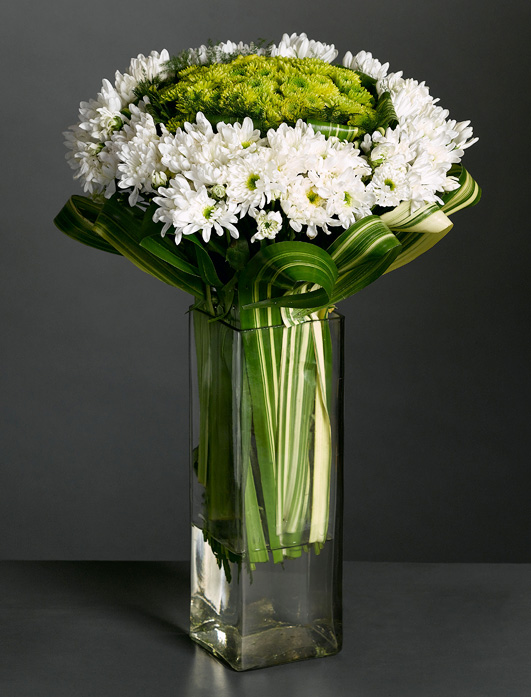 Creamy chrysanthemums set off by green tropic leaves