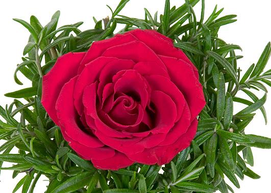 History Valentines Day