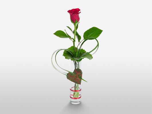 Roses for Men