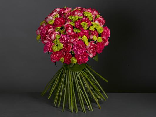 Carmichael bloom