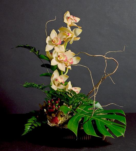 Elegant Cymbidium Orchids