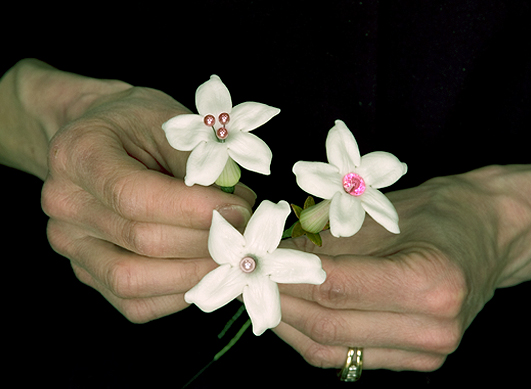 Groom Stephanotis Boutonniere