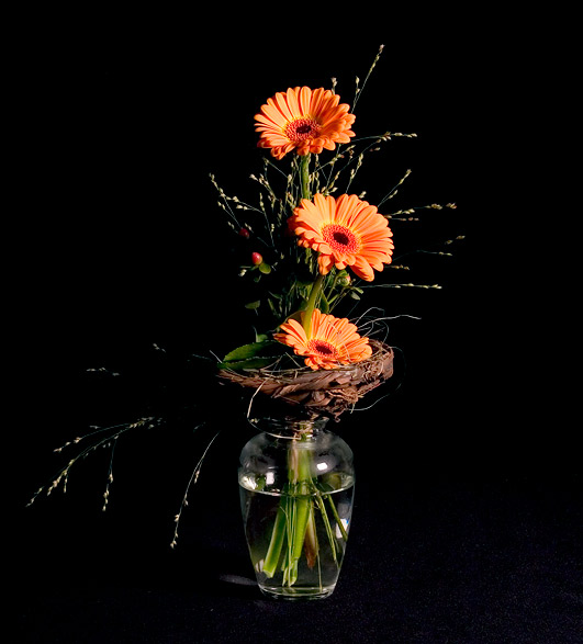 Gerbera Daisy Arrangements Vases: All About Flowers – Our Blog