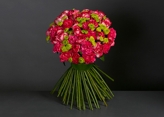 Carnations for the Centaur