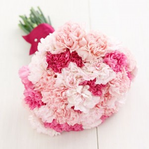 Originally called Dianthus by the Greek botanist Theophrastus, it is believed that Carnations were first cultivated in and around Egypt.