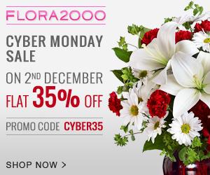 Cyber-Monday_-300x250_INTL