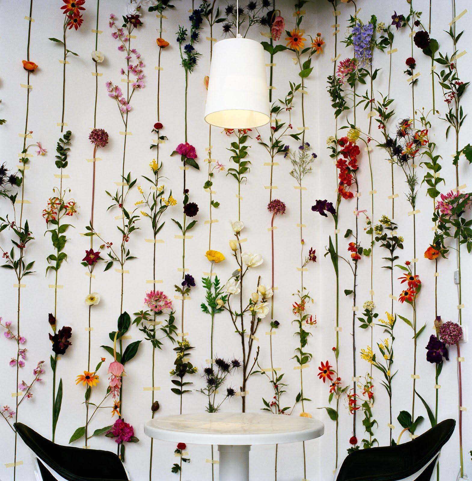 Wedding Backdrop Wallpaper Make Sure Your Photo Backdrop