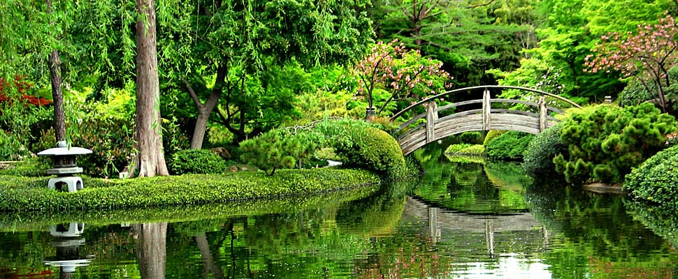 10 gorgeous gardens in america that you must visit all Fort worth botanical gardens wedding