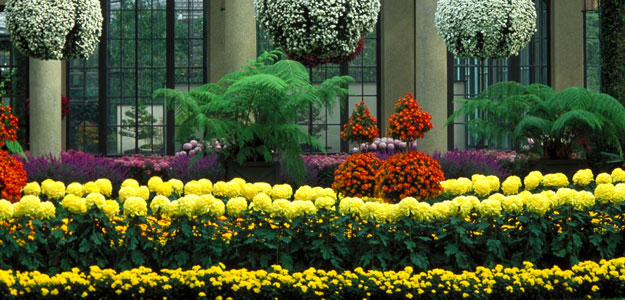 10 gorgeous gardens in america that you must visit all about flowers our blog for Longwood gardens longwood road kennett square pa