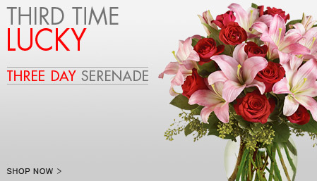 The More The Merrier! Our Valentine's Serenade Collection