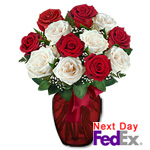 One Dozen Long Stem Red & White Roses