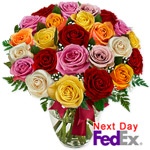 2 Doz Long Stem Assorted Roses