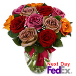 One Dozen Long Stem Assorted Roses Sale! $5 off