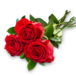three red rose bouquet