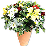 Arrangement of Red Roses & Cream Lilies