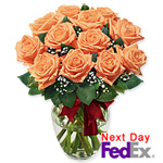One Dozen Long Stem Peach Roses