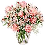 Spoilt For Roses