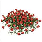 Rose Casket Cover