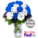 One Dozen Long Stem Blue & White Roses