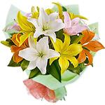 Mixed LiliesSale! $ 10 Off
