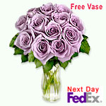 12 Lavender Roses
