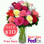 18 Mixed Mini RosesSale! $10 off