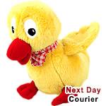 Dorky - The Duck