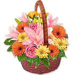 Pastel Coloured Basket Arrangement