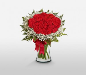 Sweetheart Red Carnations