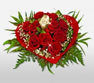 Alluring Red Valentine Roses