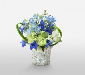 Delphiniums, Carnations, Dendrobium & Delicate Phalaenopsis Orchids