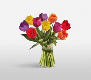 Tulips For The Special Woman
