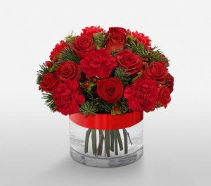 Classic Red Roses For Christmas