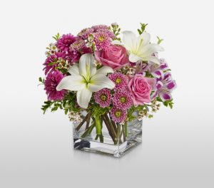 Sovereign Resplendence Mix Flowers in a Cube