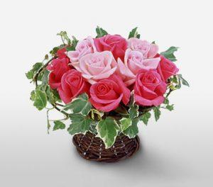 Momoiro Love Dozen Pink Roses in Basket