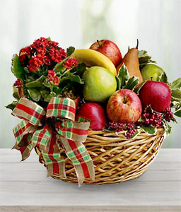 Fruit Basket-Red,Fruit,Gourmet,Basket,Hamper