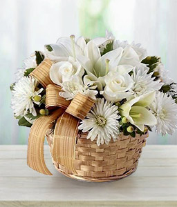Wintertide Greetings-White,Chrysanthemum,Lily,Arrangement,Basket