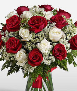 Scarlet Red N White Roses-Red,White,Rose,Arrangement,Bouquet