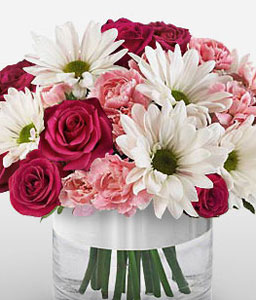 Blissful Delights-Pink,Red,White,Daisy,Carnation,Mixed Flower,Rose,Arrangement