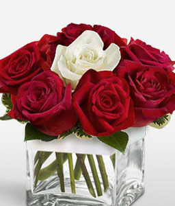 Spanish Love - Roses in Cube-Red,White,Rose,Arrangement