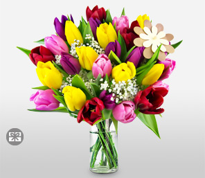Colorful Tulips For Mum