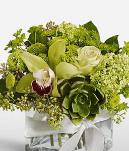 Green Fiesta-Green,Mixed Flower,Orchid,Rose,Arrangement
