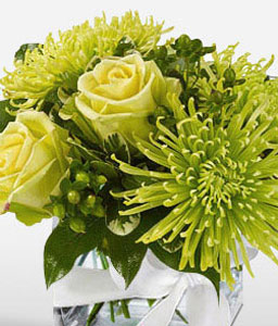 Green Mist-Green,Chrysanthemum,Rose,Arrangement