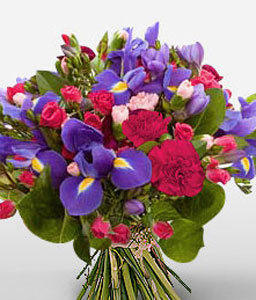 Perfect Surprise-Blue,Lavender,Mixed,Purple,Red,Violet,Carnation,Freesia,Mixed Flower,Rose,Bouquet