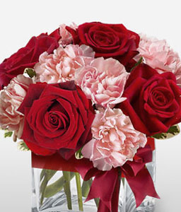 Jaime - Carnation & Roses-Pink,Red,Carnation,Rose,Arrangement