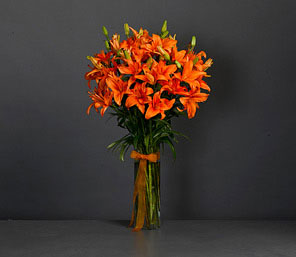 Asiatic Lilium Orange <font color=red>Free Vase</font>
