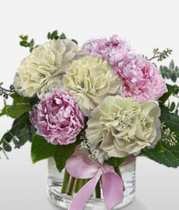 Peonies And Carnations-Pink,White,Carnation,Poinsettia,Arrangement