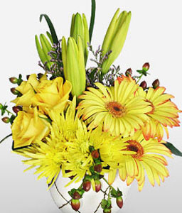 Day Dreamer-Yellow,Daisy,Gerbera,Lily,Rose,Arrangement