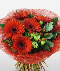 Crimson Delight-Green,Red,Daisy,Gerbera,Bouquet