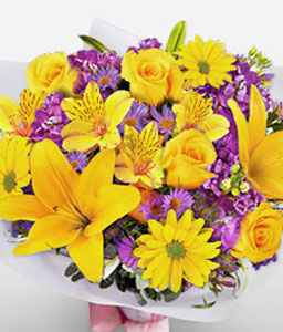 Star Gazer-Purple,Violet,Yellow,Chrysanthemum,Daisy,Hydrangea,Lily,Mixed Flower,Bouquet
